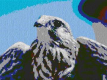 Vorlage für Ministeck Falke 80x60cm cartoon Style als Entwurfdruck