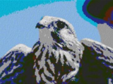 Vorlage für Ministeck Falke 80x60cm cartoon Style als Volldruck