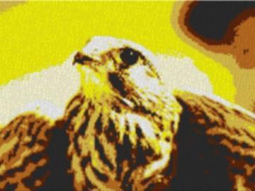 Vorlage für Ministeck Falke 80x60cm yellow Style als Entwurfdruck