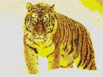 Vorlage für Ministeck Tiger im Schnee 80x60cm yellow Style als Entwurfdruck