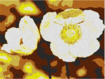 Vorlage für Ministeck Anemone 80x60cm yellow Style als Volldruck